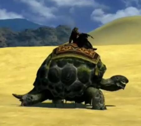 Les tortues adamantoises peuvent être de bons moyens de transport