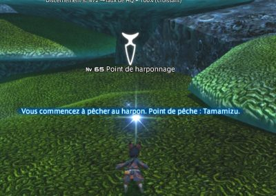 pêche-harpon-ffxiv