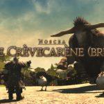 Guide : L'Ile de Crèvecarène Brutal