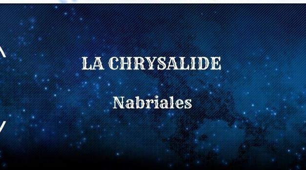 Guide : La Chrysalide